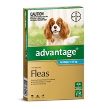 Advantage Dog 4-10Kg Blue 6 Pack