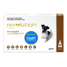 Revolution Dog 5-10Kg Brown 6 Pack