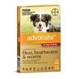 Advocate Dog 3 Pack_BAY0132_1