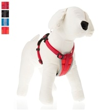 Small Padded Dog Harness 25-35cm