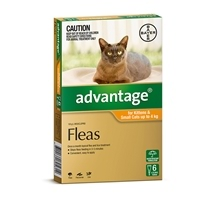Advantage Cat Up To 4Kg Orange 6 Pack