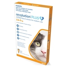 Revolution Plus Cat 2.5-5KG 3 Pack