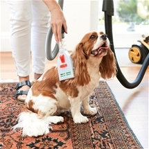 Pet Grooming Vacuum Attachments