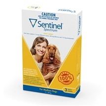 Sentinel Spectrum Dog 11-22Kg Yellow 3 Pack