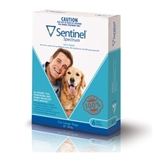 Sentinel Spectrum Dog 22-45Kg Blue 6 Pack