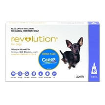 Revolution Dog 2.6-5Kg Purple 6 Pack