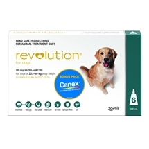 Revolution Dog 20-40Kg Green 6 Pack