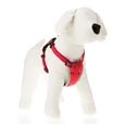Padded Dog Harnesses_AN0218_1