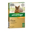 Advantage Cat 6 Pack_BAY0034_0