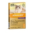 Advocate Cat 6 Pack_BAY0124_1