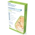 Revolution Plus Cat_CHR0100_5