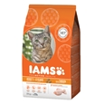 Iams Cat Adult Chicken_I27553_0