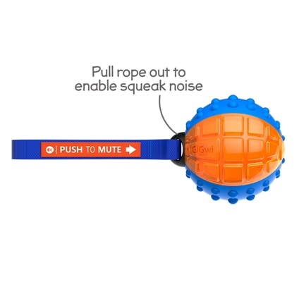 Push to Mute Ball Dog Toy - House of Pets
