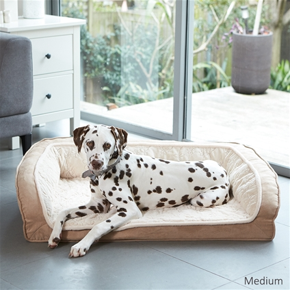 Luxurious Dog Lounge