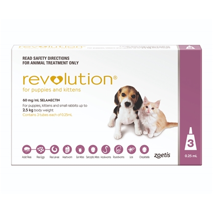 Revolution Puppy and Kitten